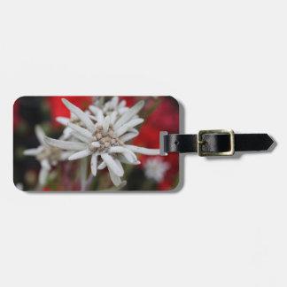 Lovely Edelweiss Leontopodium nivale Luggage Tag