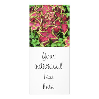 lovely Garden pics 05 Personalized Rack Card