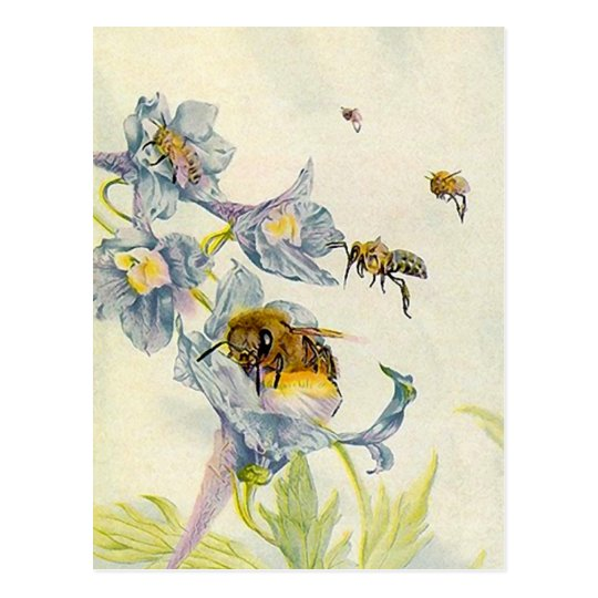 LOVELY HONEYBEES NATURE BEEKEEPERS HONEY POSTCARDS