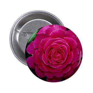 Lovely Hybrid Tea Rose 'Tiffany'leaves 6 Cm Round Badge