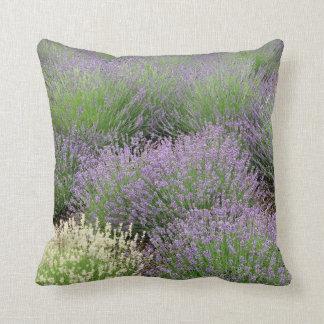 Lovely Lavender Cushion