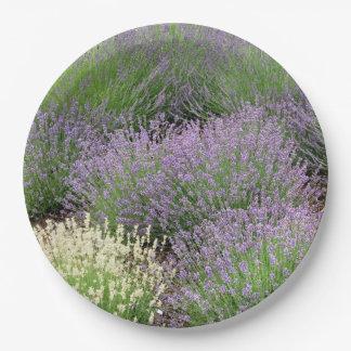 Lovely Lavender Paper Plate