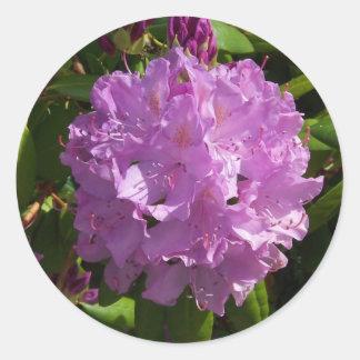 Lovely Lavender Rhododendron Round Sticker