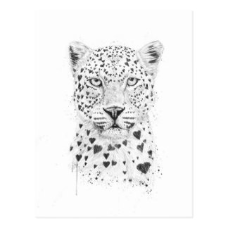 Lovely leopard postcard