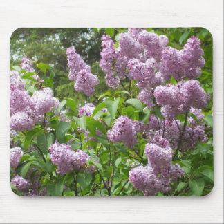 Lovely Lilac Bush Mouse Pad