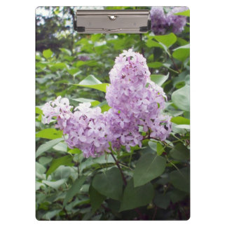 Lovely Lilac Flowers Clipboard
