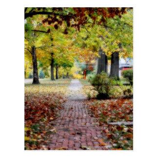 Lovely neighborhood during Fall Postcard