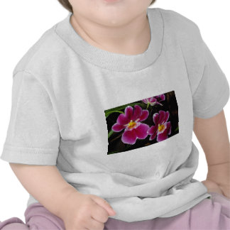 Lovely Orchid, mitonia-hybrid T Shirt