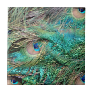 Lovely Peacock Feathers Beautiful Eyes Tile