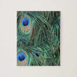 Lovely Peacock Feathers Jigsaw Puzzle