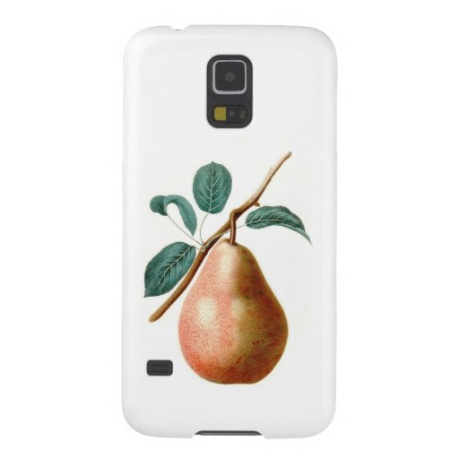 LOVELY PEAR GALAXY NEXUS COVER