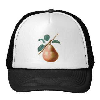LOVELY PEAR MESH HAT