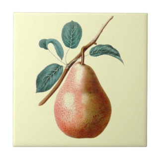 LOVELY PEAR SMALL SQUARE TILE