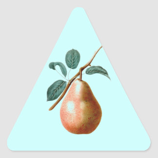 LOVELY PEAR TRIANGLE STICKER