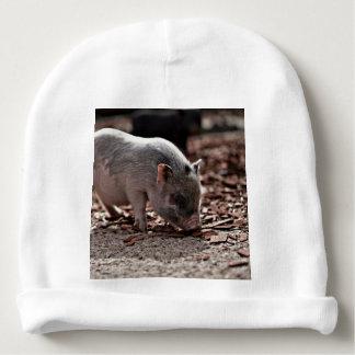 lovely piglet baby beanie