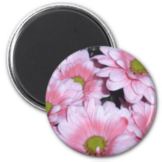 LOVELY PINK DAISY REFRIGERATOR MAGNETS