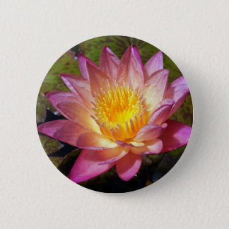 Lovely Pink Water Lily 6 Cm Round Badge