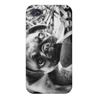 Lovely Playfull Mops iPhone 4 Covers