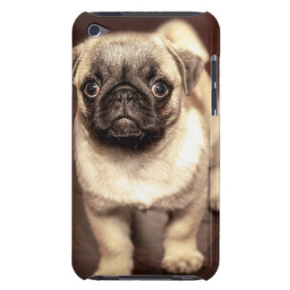 Lovely Puppy Pug, Dog, Pet, Animal iPod Touch Case-Mate Case