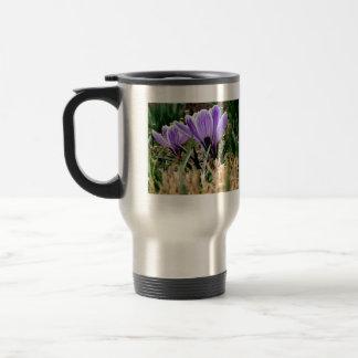Lovely Purple Crocus Flowers Mug