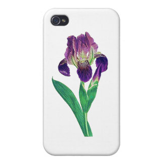 Lovely Purple Dutch Iris Cover For iPhone 4