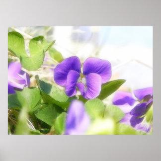 Lovely Spring Violet Poster