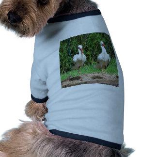 Lovely Stork Doggie Shirt