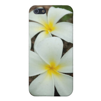 Lovely Tropical Blossoms In The South Pacific Cover For iPhone 5/5S