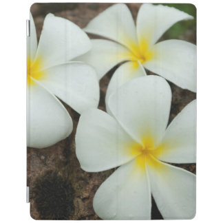 Lovely Tropical Blossoms In The South Pacific iPad Cover