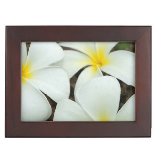 Lovely Tropical Blossoms In The South Pacific Keepsake Box