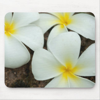 Lovely Tropical Blossoms In The South Pacific Mouse Mat