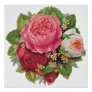 Lovely Vintage Roses Poster