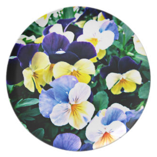 Lovely Viola Party Plates