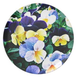 Lovely Viola Plate