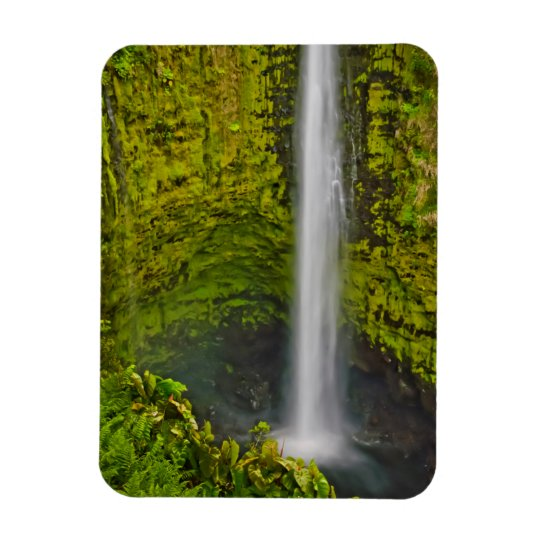 Lovely Waterfalls And Cascades Abound Rectangular Photo Magnet