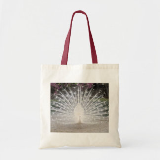 Lovely White Peacock - Budget Tote