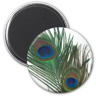 Lovely White Peacock Feather 6 Cm Round Magnet