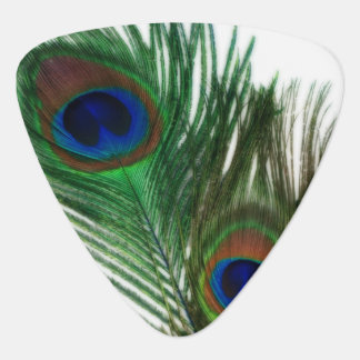 Lovely White Peacock Feather Guitar Pick