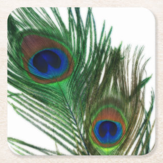 Lovely White Peacock Square Paper Coaster
