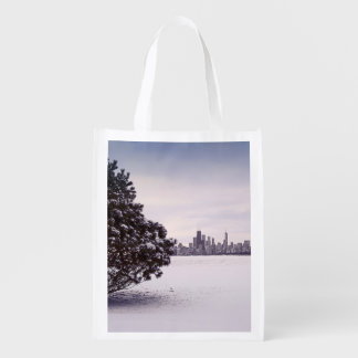lovely winter Chicago - reusable bag