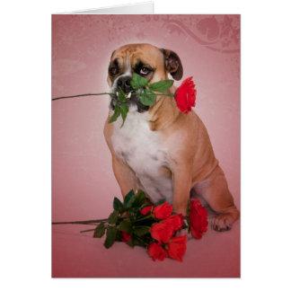 Lover Boy Greeting Card