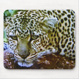 """LOVING EYES LEOPARD"" MOUSE PAD"