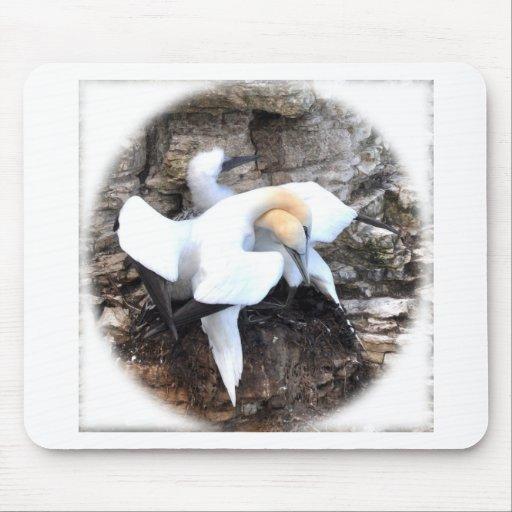 Loving Gannets Mousepads