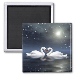 Loving swans square magnet