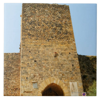 Low angle view of a fort, Porta Franca, Tile