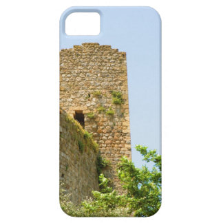 Low angle view of an ancient building, iPhone 5 cover