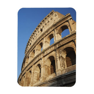 Low angle view of Colosseum Vinyl Magnet