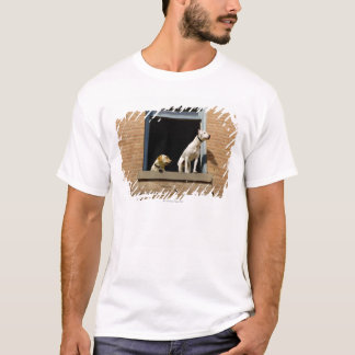 Low angle view of dogs in open window of brick T-Shirt