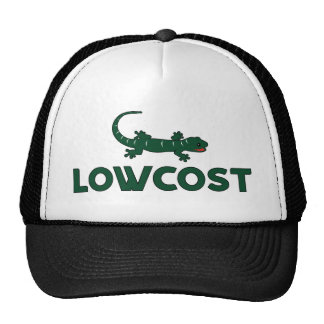 Low Cost Mesh Hat