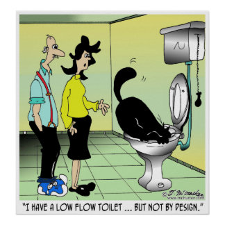 Low Flow Toilets & Cats Poster
